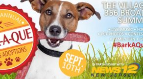 Summit NJ Bark-A-Que
